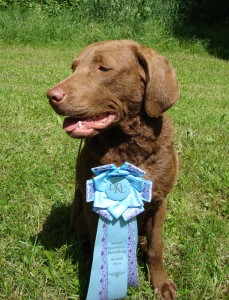 Sea'nLand Faron 'Best Youngster'