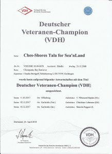 Ches-Shores Tala for Sea'nLand - Dt.Vet.Ch VDH und DRC